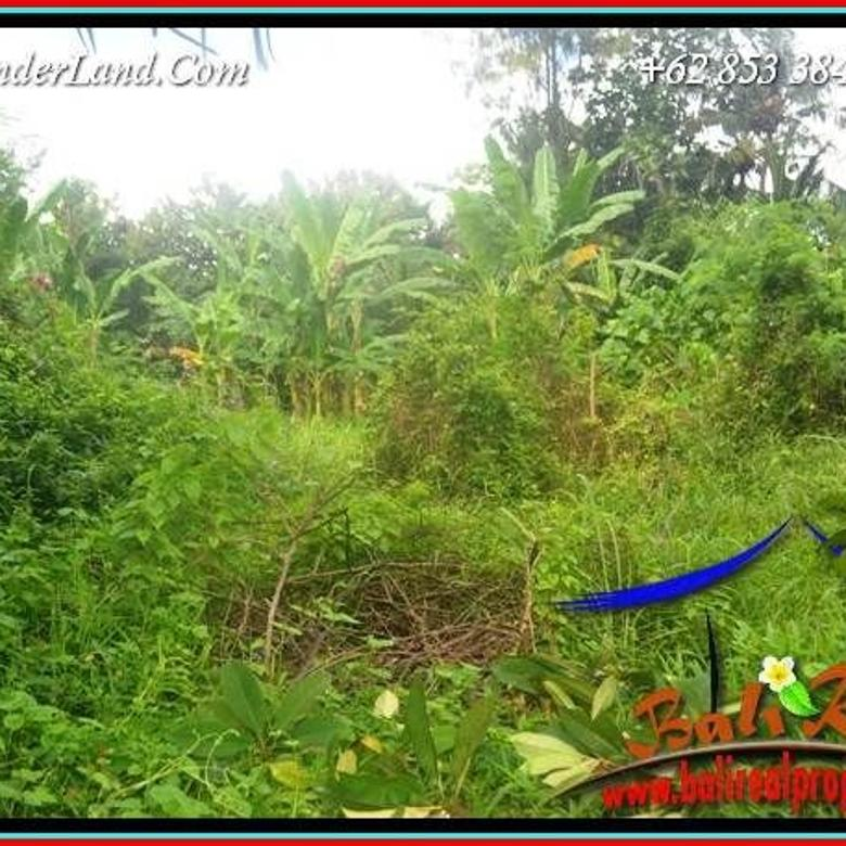 Beautiful Green lush view in Sentral Ubud