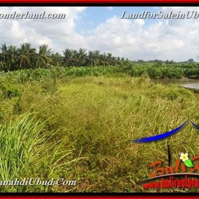 JUAL TANAH di UBUD 400 m2  View Sawah link Villa