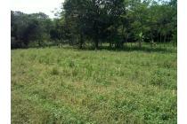 Dijual Cepat Tanah 9 Ha di Purabaya, Sukabumi AG1052