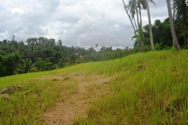 Rp6,64mily Tanah Dijual