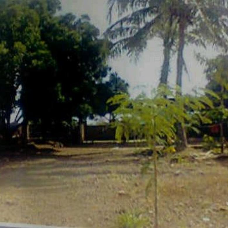Dijual Butuh Cepat Tanah dan Bangunan Gudang di Kupang, NTT PR249