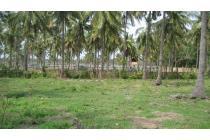 Tanah potensial di Gili Trawangan-Lombok