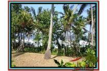 Tanah sangat Spesial Potensial 2.345 m2 di Tabanan Selemadeg A158