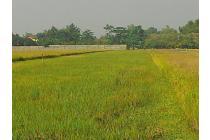 Tanah Mudah Di Tembelang
