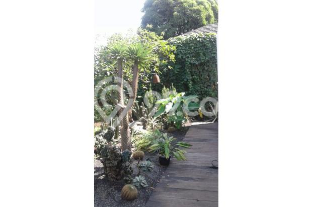 Townhouse di Jati Padang, Jakarta Selatan - Rp. 22 M NEGO!! 13244078