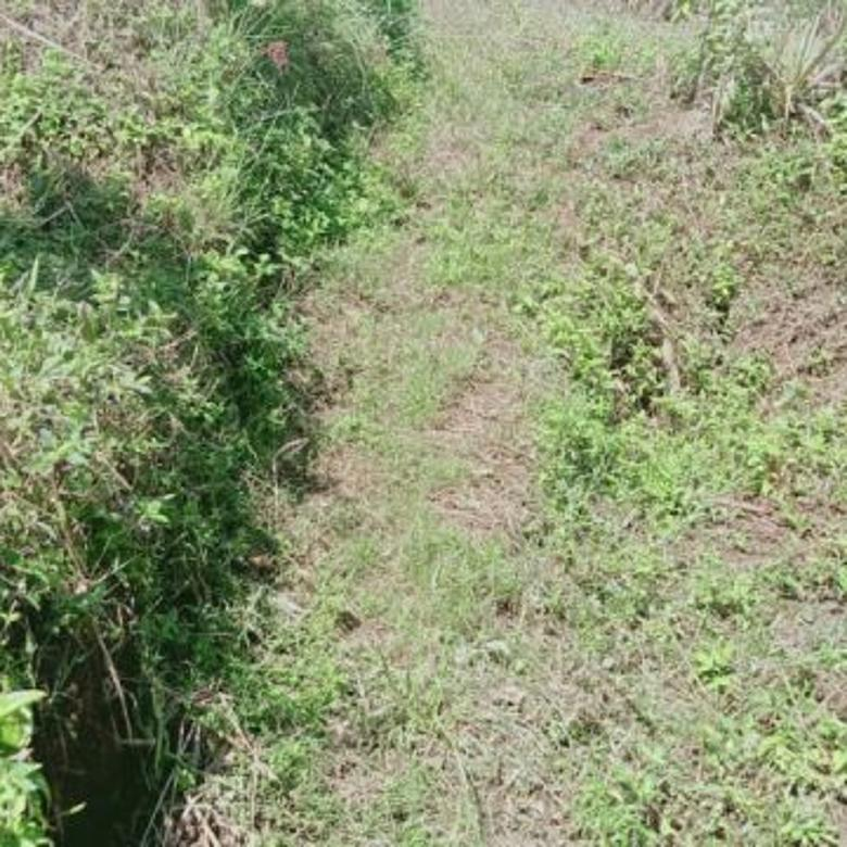Tanah pertanian luas subur view bagus daerah pegunungan Batu