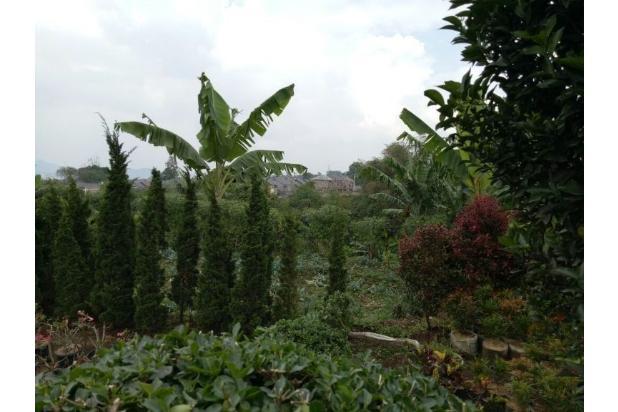 Rp1,04mily Tanah Dijual