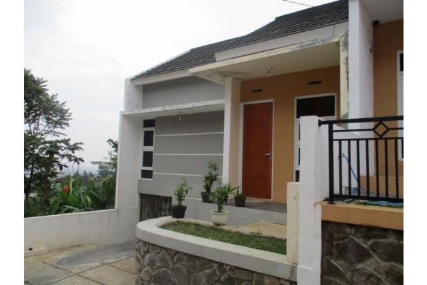 rumah minimalis lokasi asri, berkualitas harga terjangkau 15145565