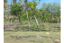Dijual tanah, dikawasan Lombok Tengah Provinsi Nusa Tenggara Barat