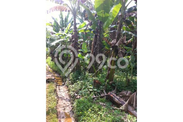 DIjual Tanah di kawasan Griya Alam Sentul Puncak 2 2526986