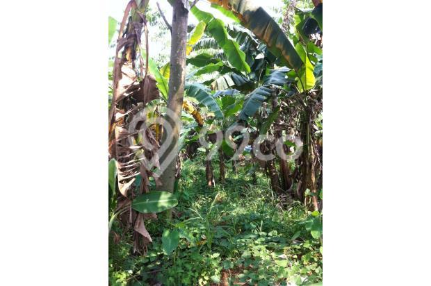 DIjual Tanah di kawasan Griya Alam Sentul Puncak 2 2527010