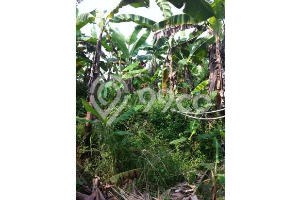 DIjual Tanah di kawasan Griya Alam Sentul Puncak 2 2527013