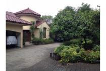 Rumah Istimewa dan Cantik