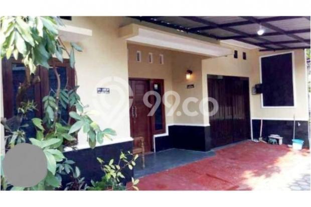 Info Rumah Jogja, Dijual Rumah di Umbulharjo Dekat Kampus Widya Wiwaha 9839988