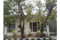 Rumah Bersih Terawat Di Babatan Pilang