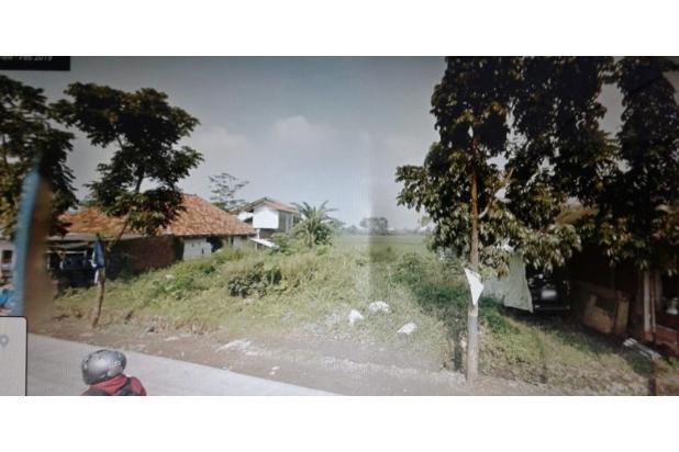 Rp219mily Tanah Dijual