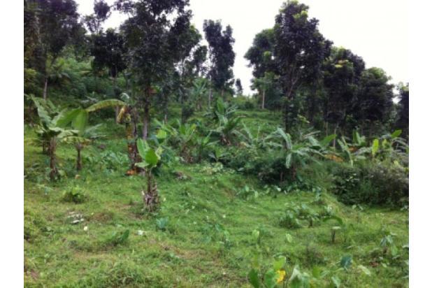 Lokasi Terbaru Tanah Di Bojong Koneng II 2351326