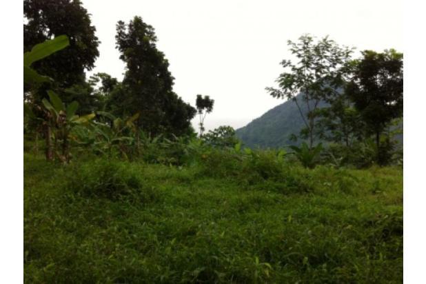 Lokasi Terbaru Tanah Di Bojong Koneng II 2351327