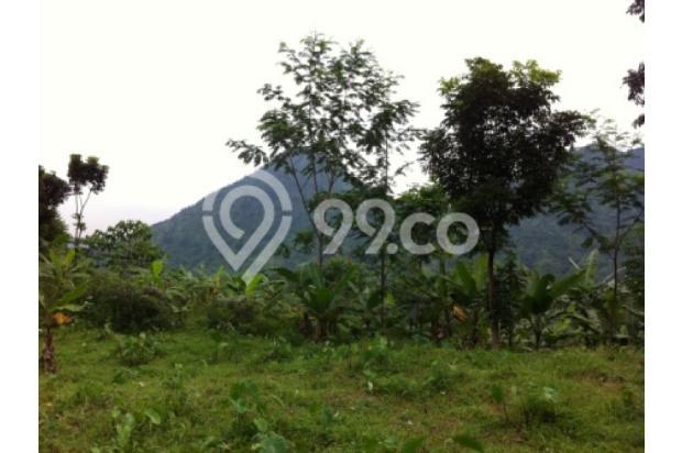 Lokasi Terbaru Tanah Di Bojong Koneng II 2351329