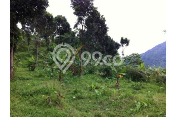 Lokasi Terbaru Tanah Di Bojong Koneng II 2351330