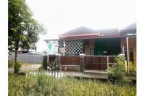 Rumah dengan view sawah di selatan giwangan