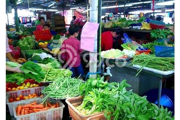 Rumah Murah Over Kredit Rosella 42/120 Citra Indah City Bogor 14418840
