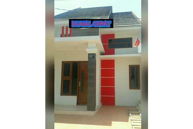 Rumah Gress 50/100 (5x20) Wonorejo Rungkut 13794869