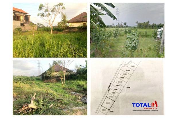 Rp1,2mily Tanah Dijual