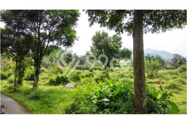 Tanah bagus seluas = 7,000M2 (Cilember-Cisarua) 7670212