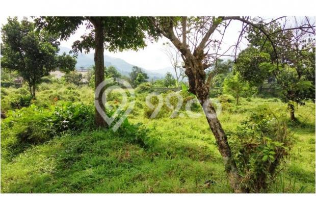 Tanah bagus seluas = 7,000M2 (Cilember-Cisarua) 7670218