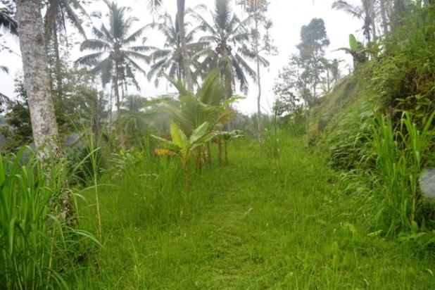 Rp26,2mily Tanah Dijual