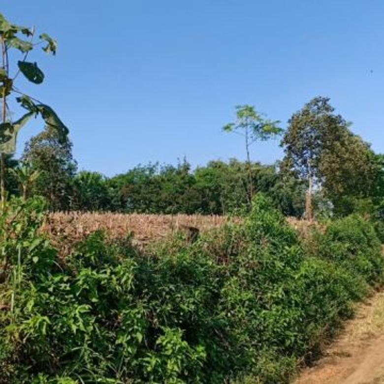 Tanah sangat murah dan luas di Tawangargo Malang