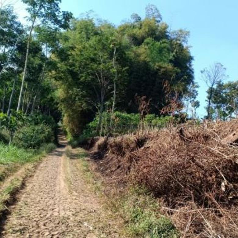 Tanah-Malang-3