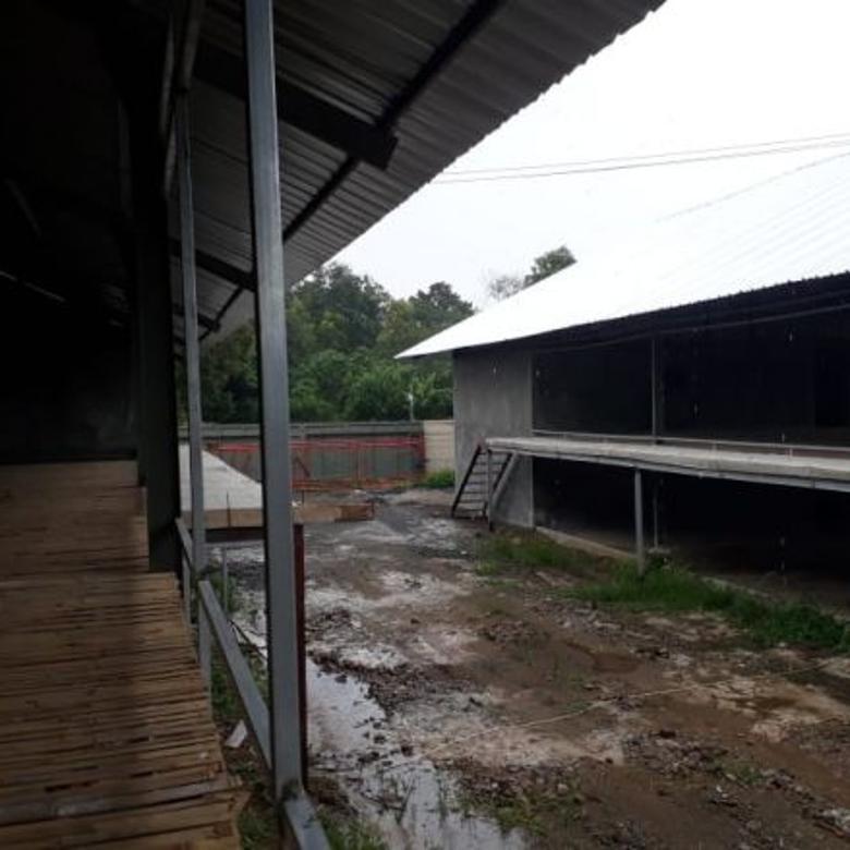 Tanah-Subang-2