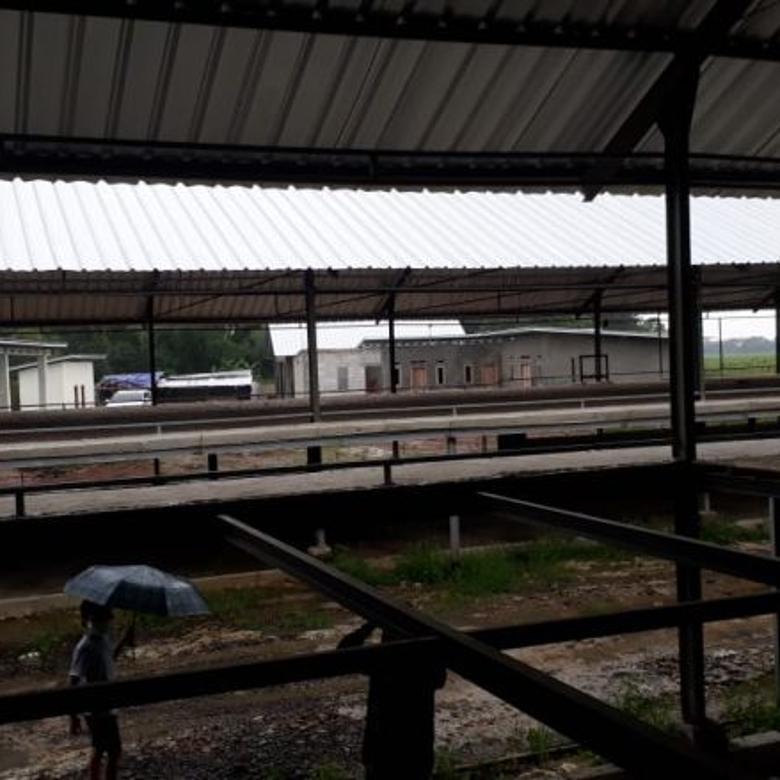 Peternakan Ayam terpadu di Subang Jawa Barat