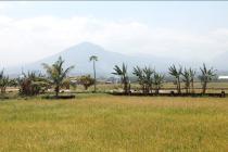 Jual tanah mainroad Rancaekek 30 ha