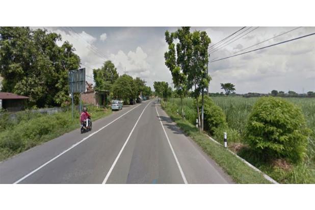 [HOT Investment]Tanah Raya 0 Jalan Provinsi Nglawak Kertosono Nganjuk 17700076