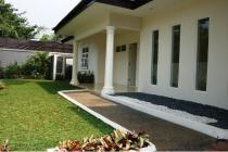 One level and bright house with greeny garden in Pejaten