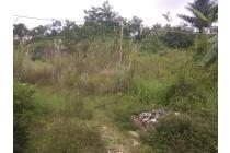 Tanah Padalarang