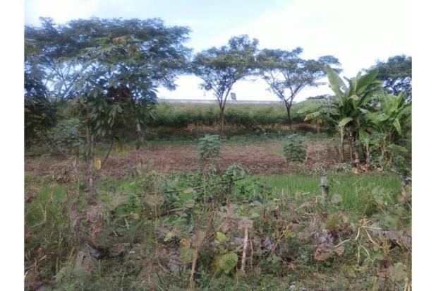 Rp2,98mily Tanah Dijual