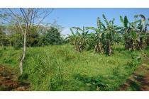 Tanah Bagus di Bogor Harga Murah