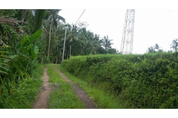 Tanah Kebun / tegalan Manikyang Selemadeg tabanan 15789182