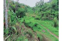 tanah
