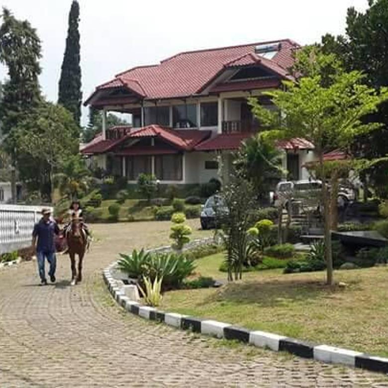 Villa Mewah Dikawasan Puncak Dengan Panorama Gunung Pangrango