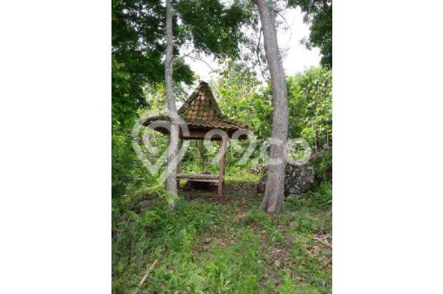 Dijual 1 bukit diatas puncak wisata alam seribu batu dlingo bantul yogya 15424443