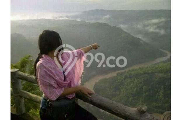 Dijual 1 bukit diatas puncak wisata alam seribu batu dlingo bantul yogya 15424446