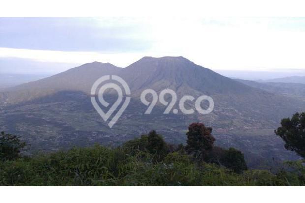 Dijual 1 bukit diatas puncak wisata alam seribu batu dlingo bantul yogya 15424447
