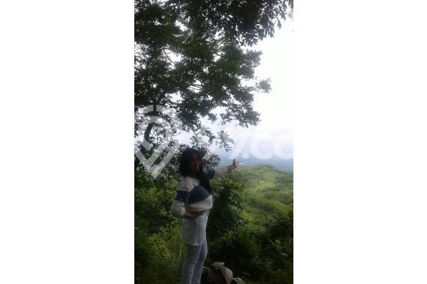 Dijual 1 bukit diatas puncak wisata alam seribu batu dlingo bantul yogya 15424448