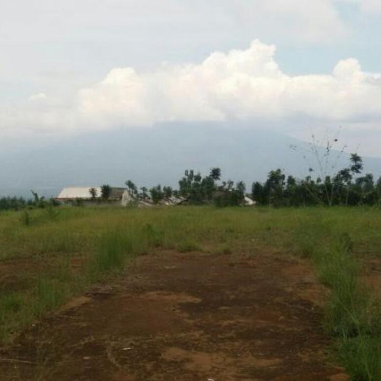 Tanah Pancawati Bogor