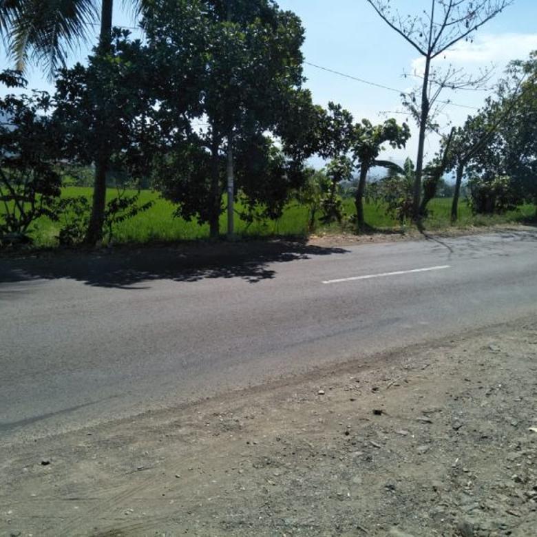 tanah shm luas dijalan Provinsi,bandung selatan